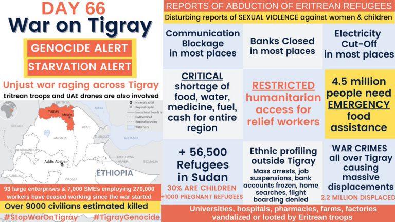 Day 66 of war on Tigray: Eritrea's shadow war, millions need aid