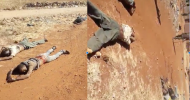 A graphic footage of the Debre Abay massacre: What do we know about it?