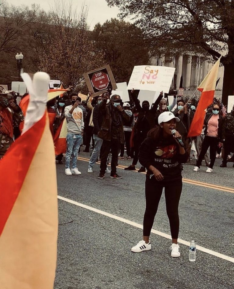 Tigrayan protests against the war on Tigray across the globe (a photo essay)