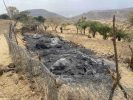 Eritrean Troops burn down and destroy animal food, houses and infrastructures in Debre Genet Village of Naeder Adet, central Tigray (videos and photos)