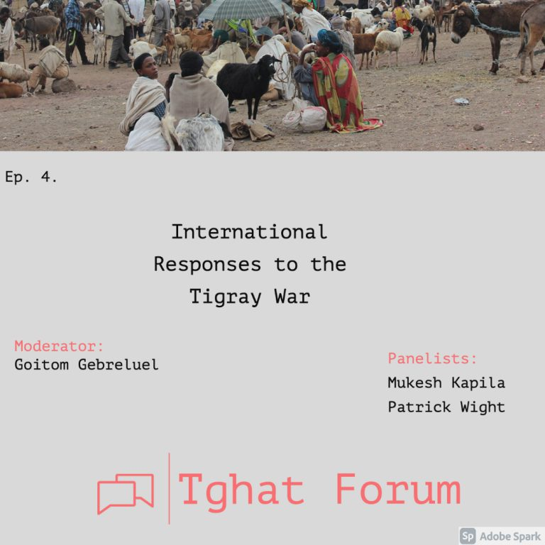 Tghat Forum 4:  International Response to the Tigray War.