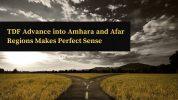 TDF Advance into Amhara and Afar Regions Makes Perfect Sense